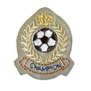 79C08487A champion patch