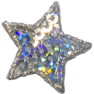 Silver star with sequins